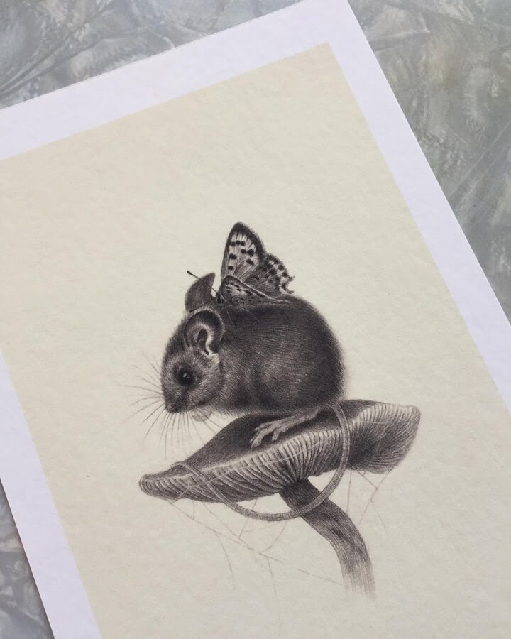 06-The-mouse-and-the-butterfly-Katrin-Berge-www-designstack-co