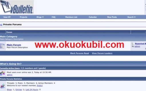 vBulletin foruma Footer Ana Sayfa Altına Kanun ve Telif Hakkı Yazısı Ekleme