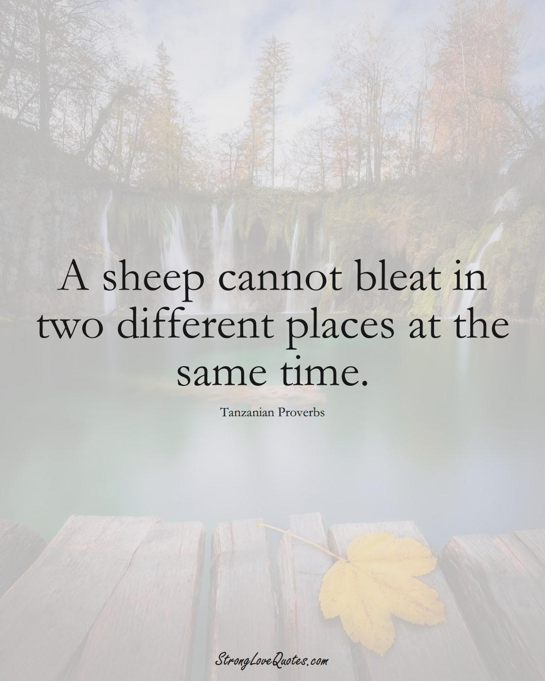 A sheep cannot bleat in two different places at the same time. (Tanzanian Sayings);  #AfricanSayings