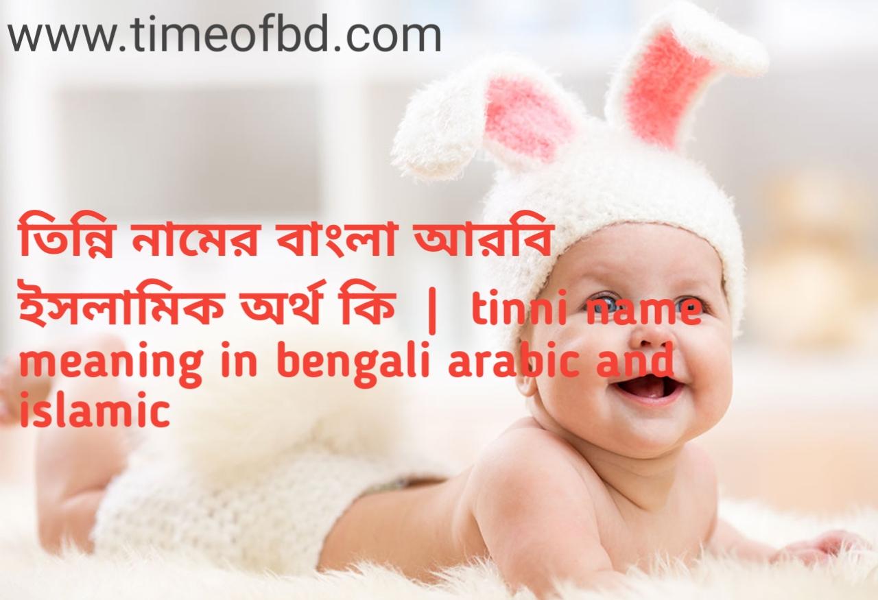 তিন্নি নামের অর্থ কী, তিন্নি নামের বাংলা অর্থ কি, তিন্নি নামের ইসলামিক অর্থ কি, tinni name meaning in bengali