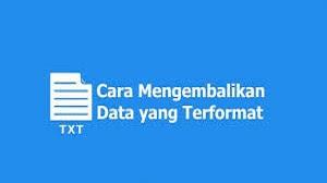 Cara Mengembalikan Data yang Terformat