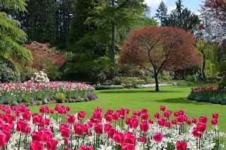http://www.afcampana.org.ar/p/curso-de-jardineria-y.html