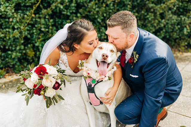 bride groom and dog