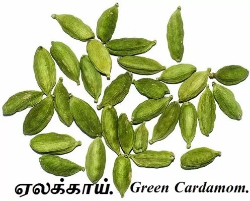 ஏலக்காய் - Green and Black Cardamom.