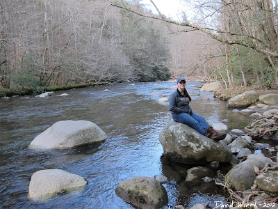 sitting on a river rock in the smokey mountain national park