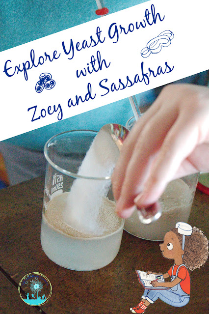 What Increases Yeast Growth; Simple Science Experiment