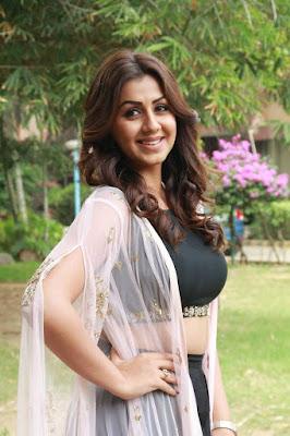 Nikki Galrani hot photo, actress photos, heroine hot photos