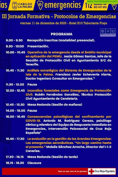 El Cabildo de La Palma analizará hoy viernes las consecuencias psicológicas del confinamiento