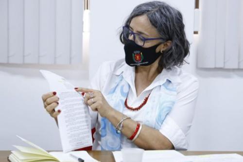 A vereadora Professora Ana Lucia – Foto: Divulgação/CMM