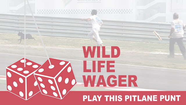 Play the Wildlife Wager Pitlane Punt