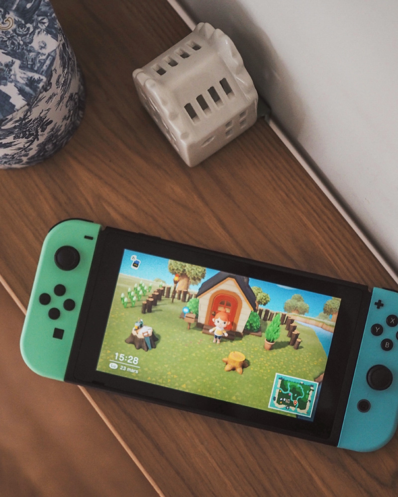 Jeu vidéo Animal Crossing New Horizons