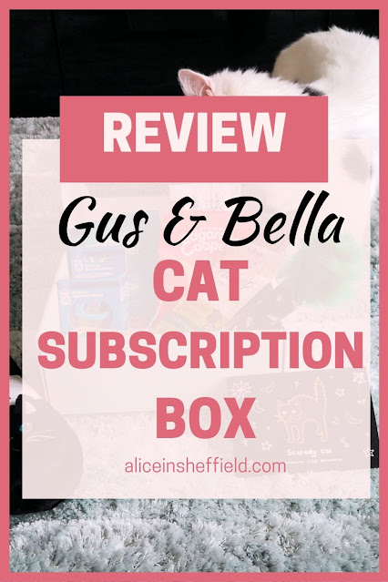 Gus and Bella Box