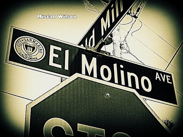 El Molino Avenue, San Marino, California by Mistah Wilson