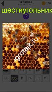 800 слов соты для пчел шестиугольники 2 уровень