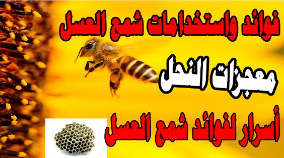 فوائد واستخدامات شمع العسل |معجزات النحل / كنوز الشفاء / فوائد شمع العسل قبل النوم- أسرار لفوائد شمع العسل Benefits and Uses of Beeswax | Miracles of Bees