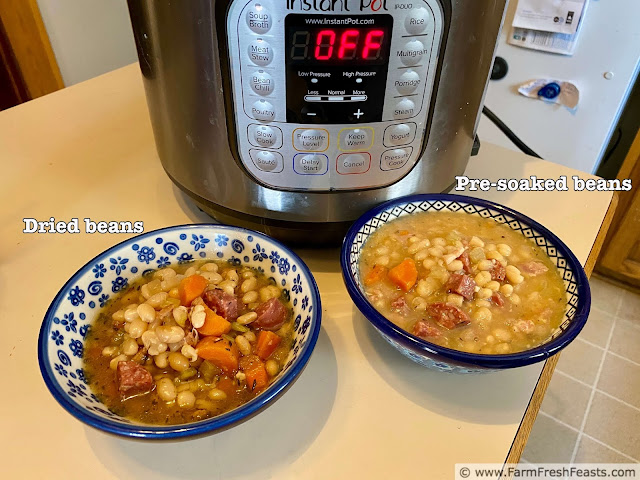 image comparing Instant Pot Cassoulet made with dry or with pre-soaked beans
