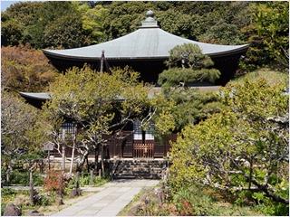 วัดซุยเซนจิ (Zuisenji Temple)