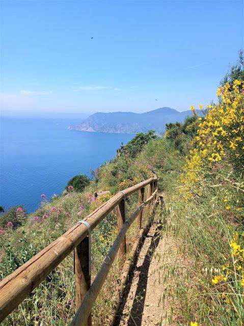 panorama sentiero 507 Vernazza