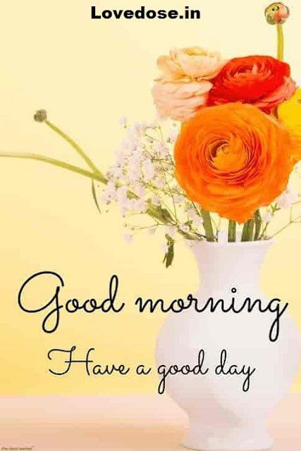 Good Morning Quotes, Wishes, Messages Images 2021