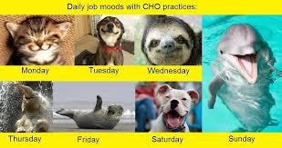 daily-job-moods2