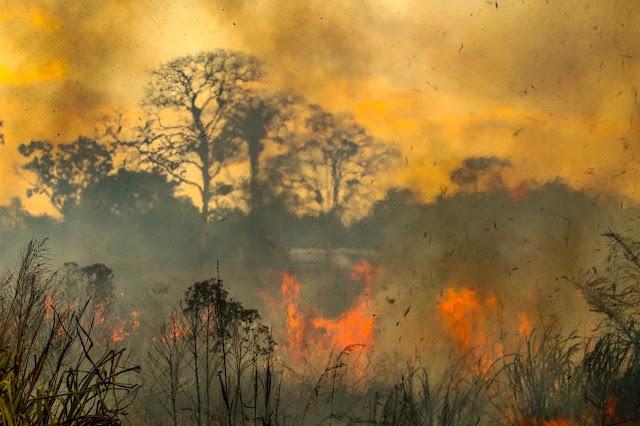 Acre entra na última semana de setembro com mais de 7 mil focos de queimadas