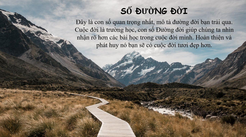 stt-duong-doi