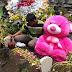 Datang Berziarah Sambil Membawa Boneka Jumbo,Netizen Di Buat Terharu Oleh Aksi Lelaki iNi