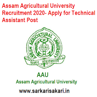 Assam Agricultural University Recruitment 2020- Apply for Technical Assistant Post