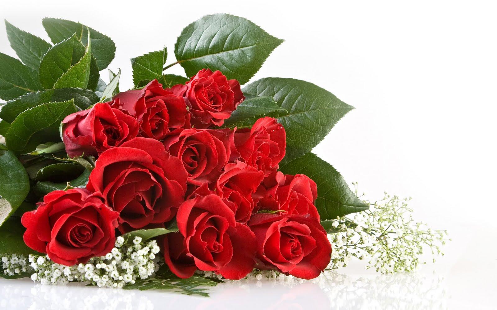 Tumbuh semak-semak mawar dan flora berwarna-warni lainnya dapat menjadi  salah satu bagian yang paling berharga dari berkebun untuk kesenangan. c9f250ecc4