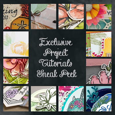 Exclusive Project Tutorials Sneak Peek - FREE for my customers who place orders of $50 or more in September.