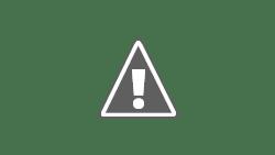 Cara Pangkas tanaman supaya berbuah lebat
