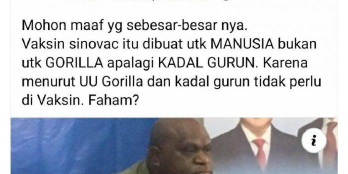 Disebut Gorilla oleh Pendukung Jokowi, Natalius Pigai: Negara Memelihara Rasisme