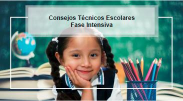 Ruta de Implementación Estratégica - Ciclo Escolar 2020-2021