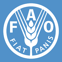 Job Opportunity at FAO - Consultant – Gender Assessment
