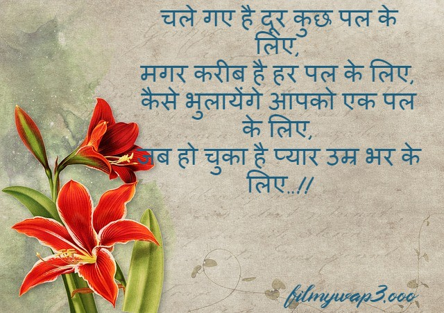 Hindi Shayari status images