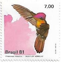 Selo Beija-flor vermelho