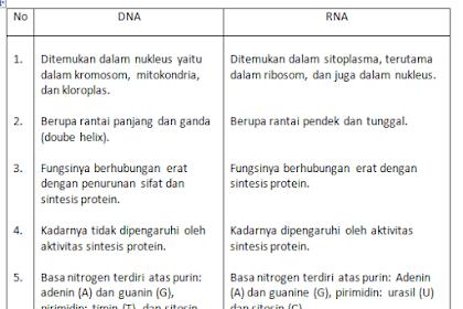 Contoh Soal Essay Biologi Kelas XII Semester 1 Beserta Jawaban ~ Part-3 - By Pengertians