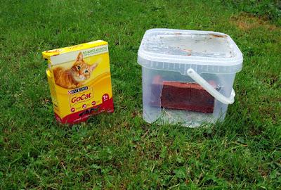 hedgehog hog feeder dry cat food