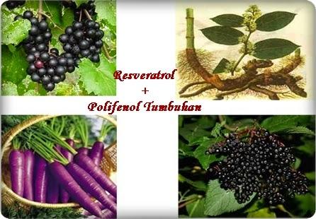 http://sweetnyer.blogspot.com/2014/07/ramuan-semulajadi-hebat-dalam-vivix.html