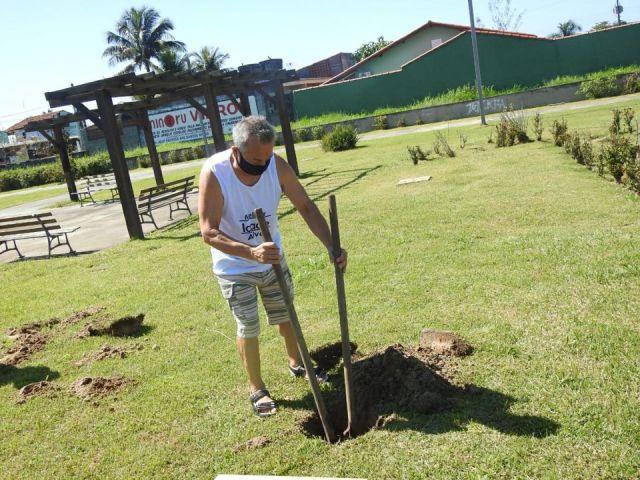 Ilha Comprida comemorou 29º aniversário com plantio de mudas de árvores e exposição virtual de fotos