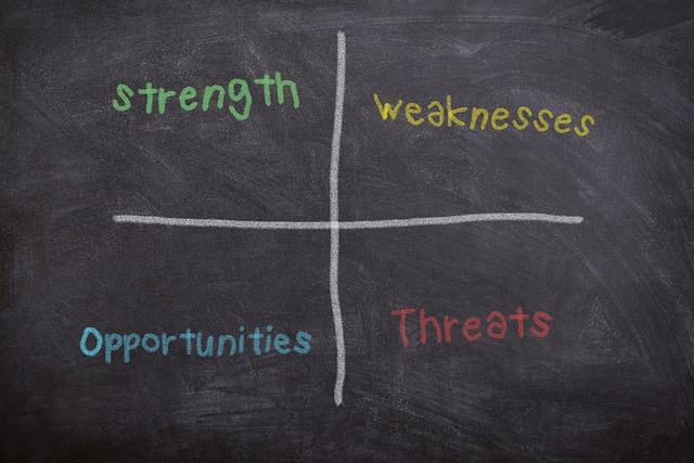 SWOT test your Business Plan