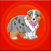Shepherd Puppy Escape