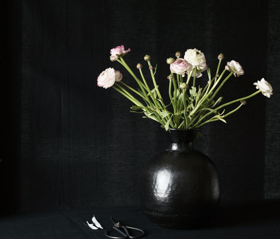 Blog + Fotografie by it's me fim.works - Ranunkeln, schwarze Vase, Schere, weiße Federn