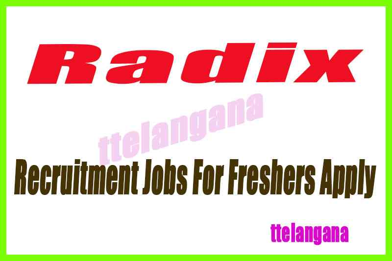 Radix Recruitment Jobs For Freshers Apply