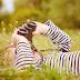 10 Fakta Masa Kecil Sapardi Djoko Damono