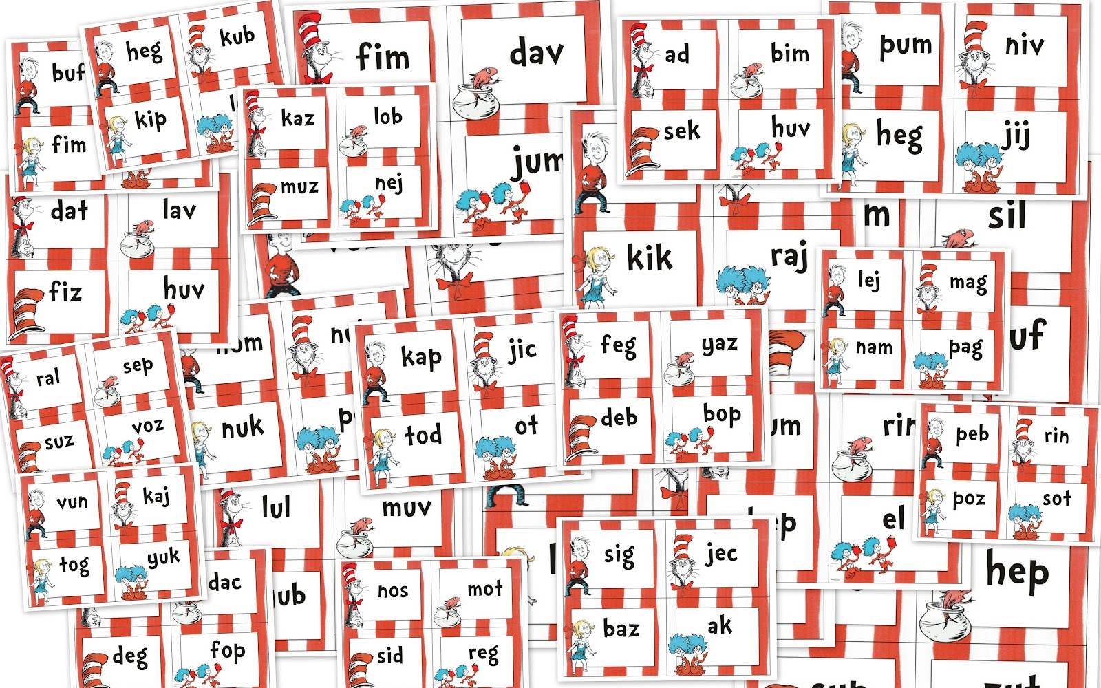 Cat In The Hat Vocabulary Words
