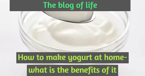 How to make yogurt at home- what is the benefits of it