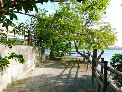 nature, #payabay, #payabayresort, paya bay resort, nature trails, views, beauty,