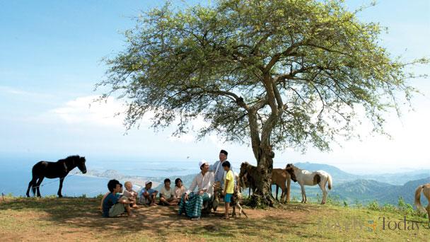 Pohon Harapan desa Mandar.