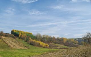 http://fotobabij.blogspot.com/2015/11/okolice-turobina-pazdziernik-2015.html